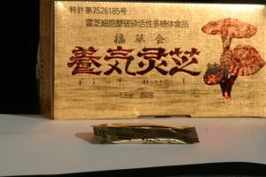 お買い得!献上品直井霊芝GY株・養気霊芝純末日本製